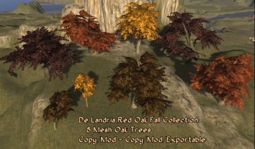De Landria Fall Red Oaks